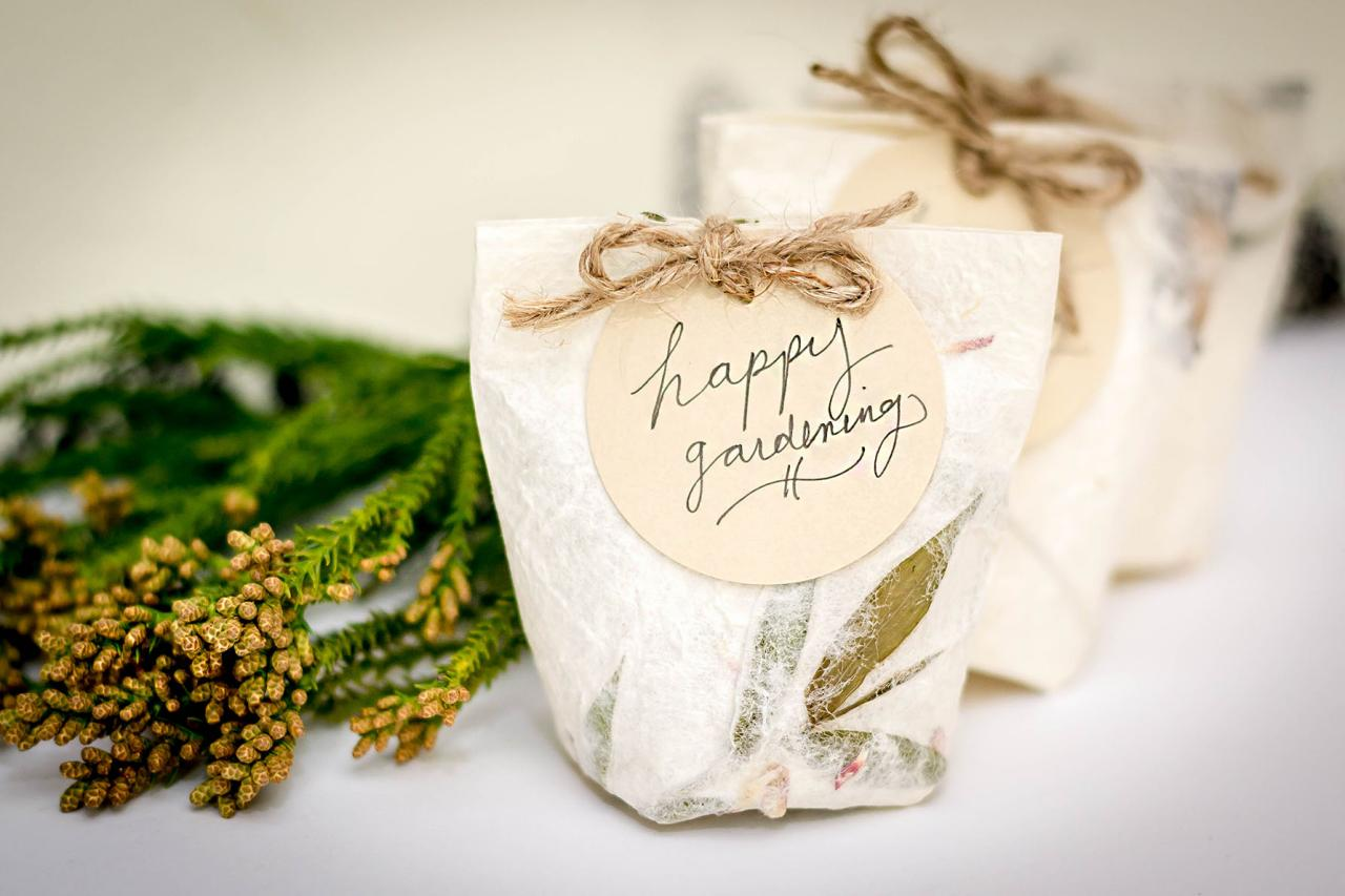 plant, plantable gift, ecofriendly gifts